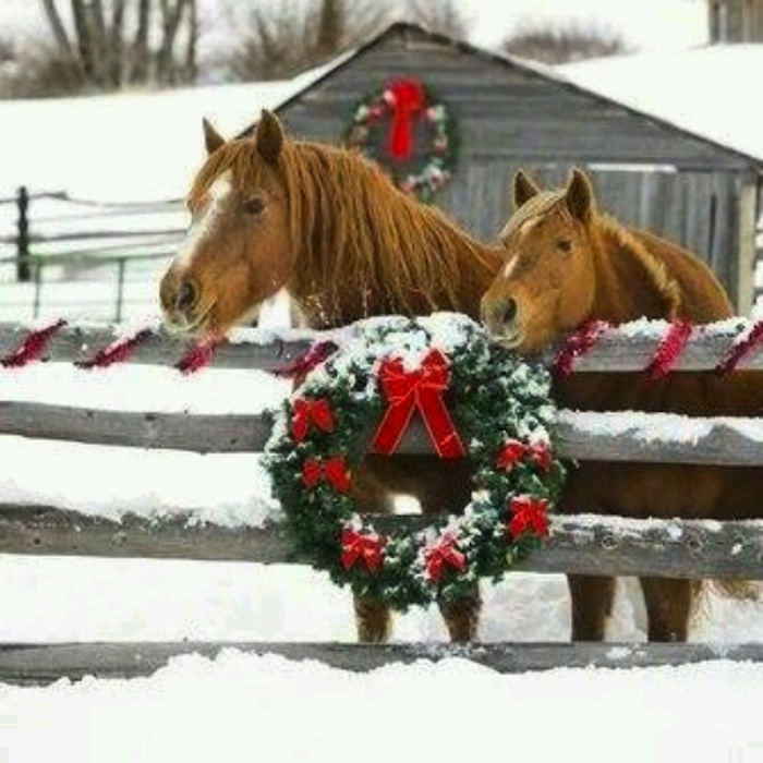 country christmas decorations - Country Christmas Images