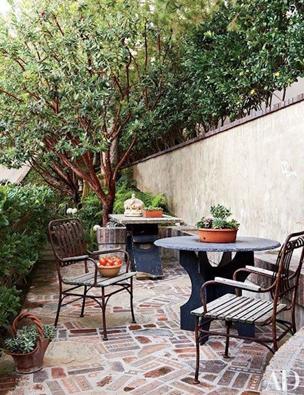 Potted Plants Outdoors